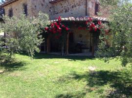 Podere Poggio Benedetto, Saturnia (Semproniano yakınında)