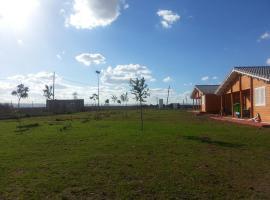 Hacienda Agricola Los Olivos, Mora (рядом с городом Mascaraque)