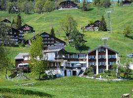 Hotel Restaurant Cristal, Braunwald (Rüti yakınında)