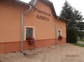 Penzion Aneta, Svijany (Žďár yakınında)