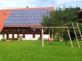 Ferdihof Holiday Home, Hierholz (Dachsberg im Schwarzwald yakınında)