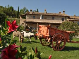 Farm stay Il Carro del Colle, Collevalenza