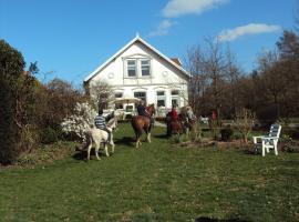 Farm stay Hof auf der Wurp, Harrierwurp (Brake yakınında)