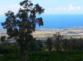 Mango Sunset BnB Inn at Lyman Organic Kona Coffee Farms, Kailua-Kona (in de buurt van Kalaoa)