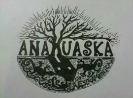 Pensión Temática Anahuaska, Panzares