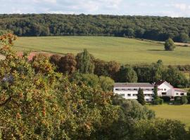 Auberge Du Parc, Baudricourt (рядом с городом Gironcourt-sur-Vraine)