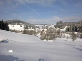 Ferienwohnung am Sägberg, Oberkirnach (Hagzinken yakınında)
