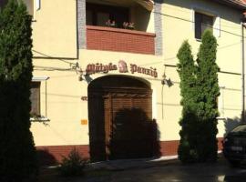 Mátyás Panzió, Szeged