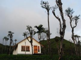 Tea Terrace Vythiri