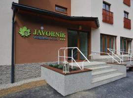 Wellness hotel Javorník, Lazy pod Makytou (Halenkov yakınında)