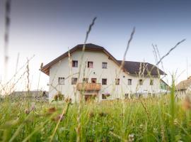 Guesthouse Macesen, Spodnja Sorica