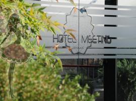 Hotel Meeting