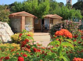 Camping Roca Grossa, Calella (San Pol de Mar yakınında)
