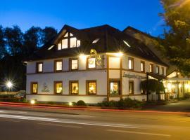 Hotel Landgasthof Schwanen, Kehl am Rhein