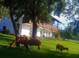 Ferienhof Pfeffer, Lam (Arrach yakınında)