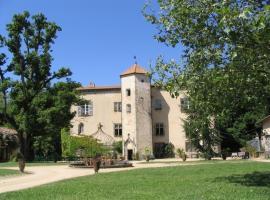 Chateau De La Chassaigne, Тьер (рядом с городом Puy-Guillaume)