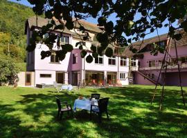 Logis Hotel Des Vosges, Севен (рядом с городом Wegscheid)