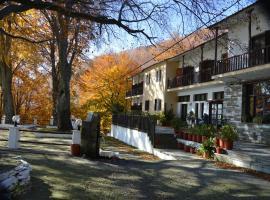 Hotel Hani Zisi