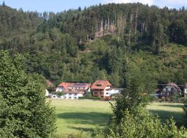 Ferienwohnung am Rain, Winden im Elztal (Oberwinden yakınında)