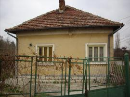 Guest House Borovan Center, Borovan