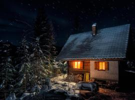 Chalet Romantic, Zgornje Jezersko (Trögern yakınında)