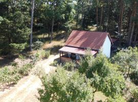 Wald&Wiesengeflüster Zechlinerhütte, Rheinsberg (Zechlinerhütte yakınında)