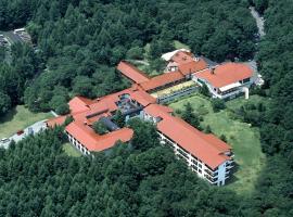 Yatsugatake Kogen Lodge, Minamimaki