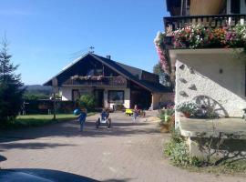 Willmannshof, Furtwangen (Gütenbach yakınında)