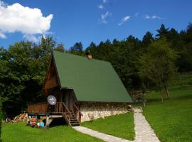 Guest House Radovic, Tatinica