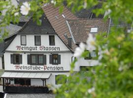 Weingut - Pension Stassen, Oberheimbach (Oberdiebach yakınında)