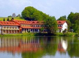 Appartement im Hotel-Gasthof zum Seebogen - Schmid Werner, Arrach (Hohenwarth yakınında)