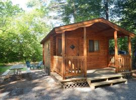 Lake George Escape Two-Bedroom Rustic Cabin 63, Warrensburg (in de buurt van Knowelhurst)