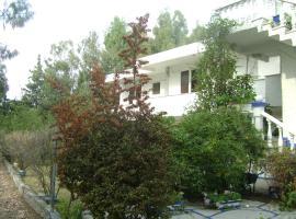 Villa Zoi, Thrónion (рядом с городом Skárfia)