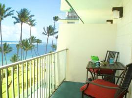 Paradise Beachfront Dolphin 604