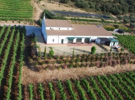 House Wine Cellar, La Cimada