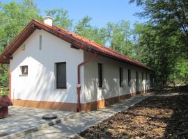 Bagosi vendégház, Hajdubagos (рядом с городом Pac)