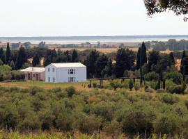 Azienda Agricola Podere San Girolamo, Fattoria Badiola