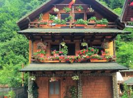 Casa Tibi, Voineasa