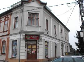 Centrum Panzió, Tolna (рядом с городом Fadd)