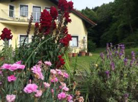 Das gelbe Haus, Sankt Christophen (Laaben yakınında)