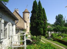 Moulin de Roche, Pindray (рядом с городом Saint-Savin)