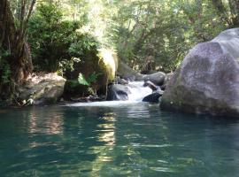 Daintree Secrets Rainforest Sanctuary, Diwan (Cape Tribulation yakınında)