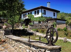 Guest House Stone Paths, Kostenkovtsi (Gostilitsa yakınında)