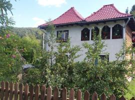 Pensiunea Letitia, Suceviţa
