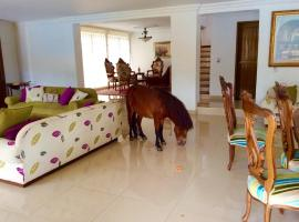 Country house Las Araucarias, Girardota