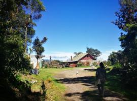 Iyok Ami (Madre Tierra), Cartago (Tres de Junio yakınında)