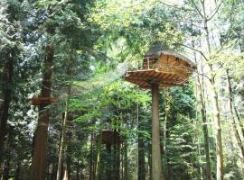 Insolite dans les arbres Les Ormes, Epiniac, Эпиньяк (рядом с городом Bonnemain)