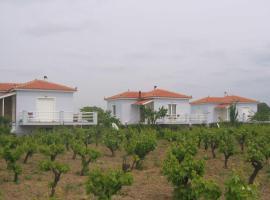 Carpe Diem Villas and Houses, Kalloni