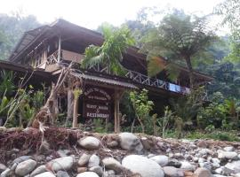 Back to Nature Ecotourism, Bukit Lawang (рядом с городом Kualagemoh)