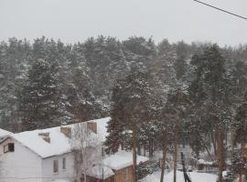 Apartments White Hole in Borovoe, Shchūchīnsk